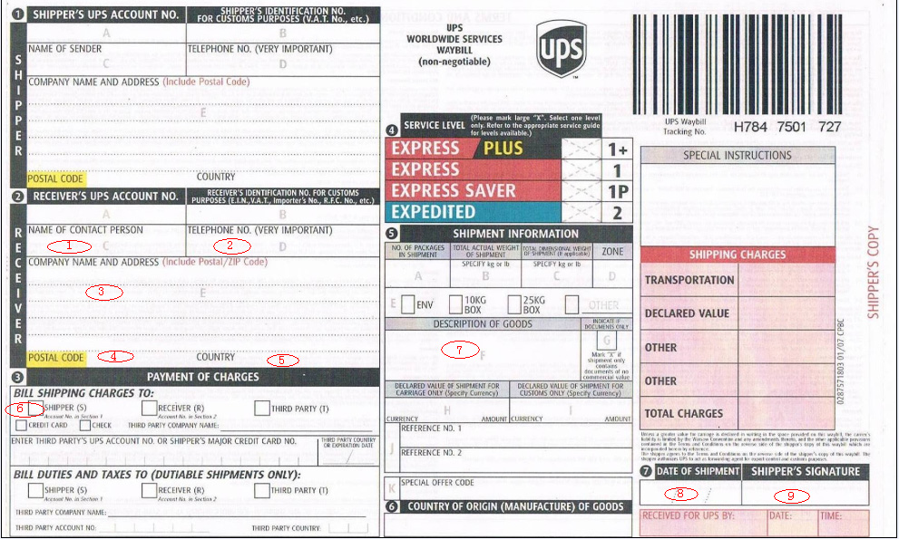 Bill of lading ups freight